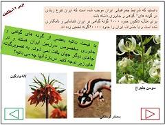 پاورپوینت درس 12حفاظت از زیستگاه های ایران مطالعات اجتماعی هفتم nemoneh darse12 motaleaat haftom